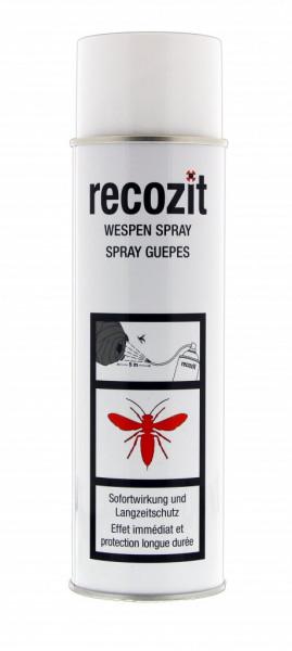 RECOZIT Wespen Spray (PIA) 500 ml